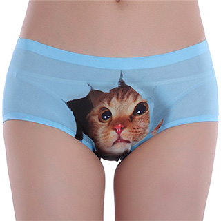 Pussycat Panties