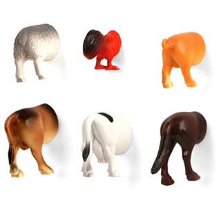 Animal Butt Magnets