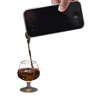 Fake Phone Flask