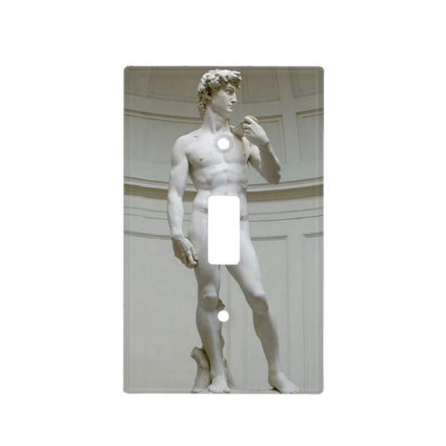 Michelangelo's David Light Switch Plate