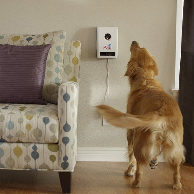 App Connected Treat Dispenser