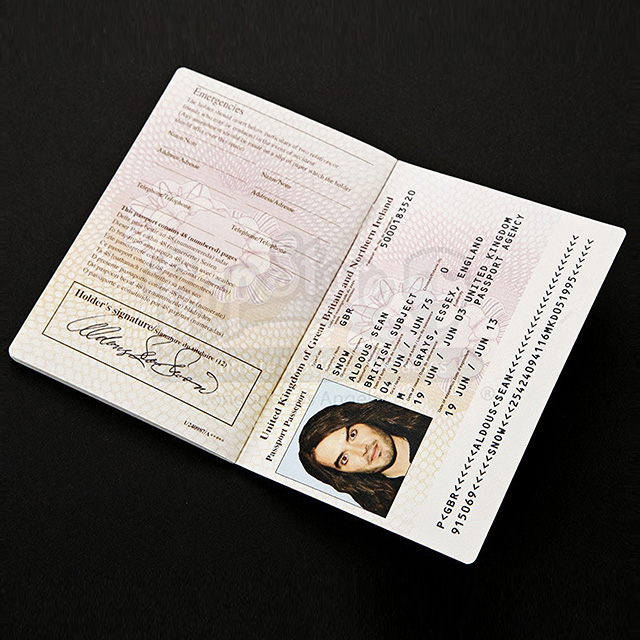 Aldous Snow's Passport