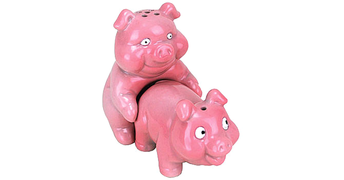 Piggy bank pigs fucking