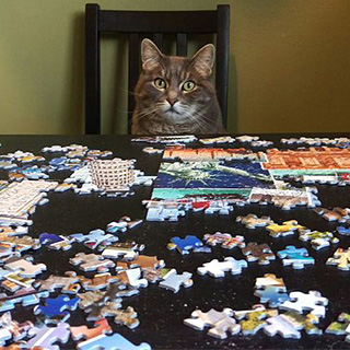 Puzzled to Death