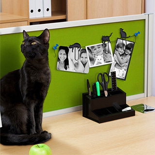 Black Cat Paper Clips