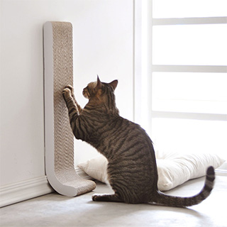 Discreet Cat Scratch Pad