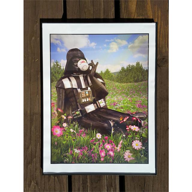 Dainty Darth Vader prints