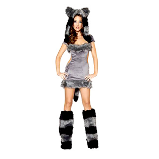 Sexy Raccoon Costume