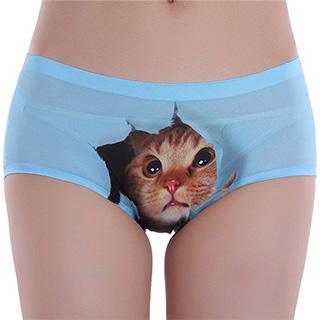 Pussycat Panties