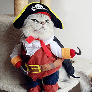 Pirate Pet Costume