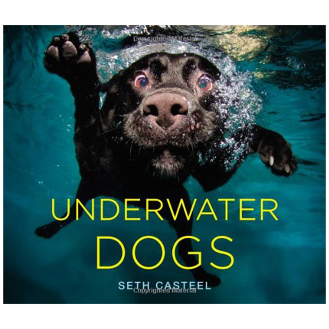 Underwater Dogs Photo Book