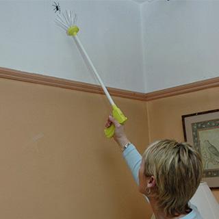 Humane Bug Catcher