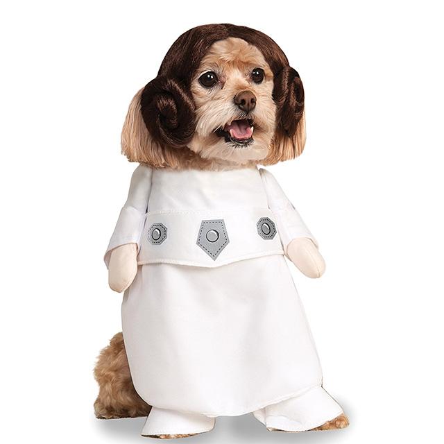 Puppy Princess Leia