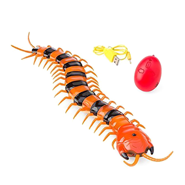 Remote Control Centipede