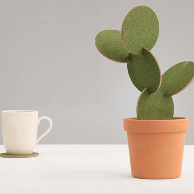 Coaster Cactus