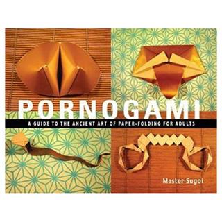 Sexual Origami Book