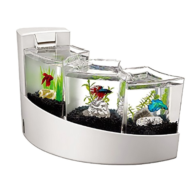 Tiered Betta Aquariums