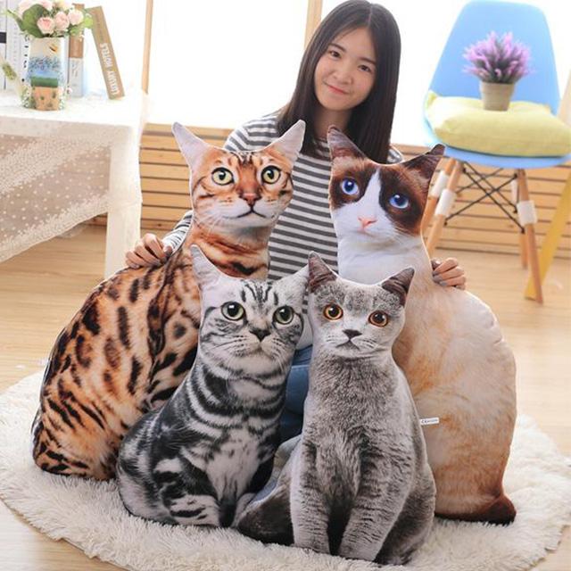 Cat Pillows