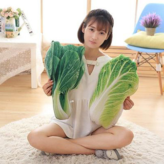 Bok Choy Pillow