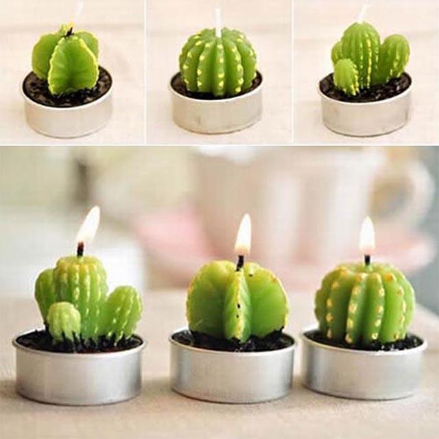 Cactus Candles