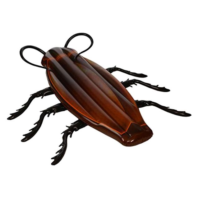 Cockroach Pool Float