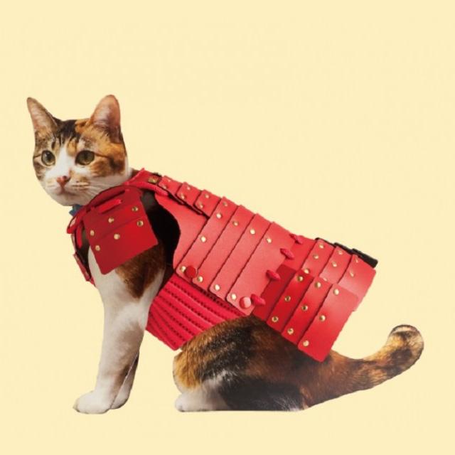 Samurai Armor for Cats