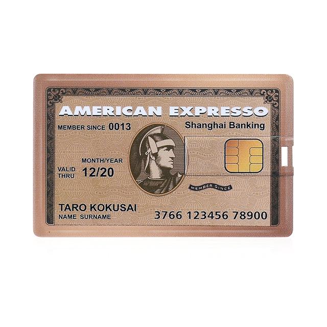 Fake Credit Card Flash Drive
